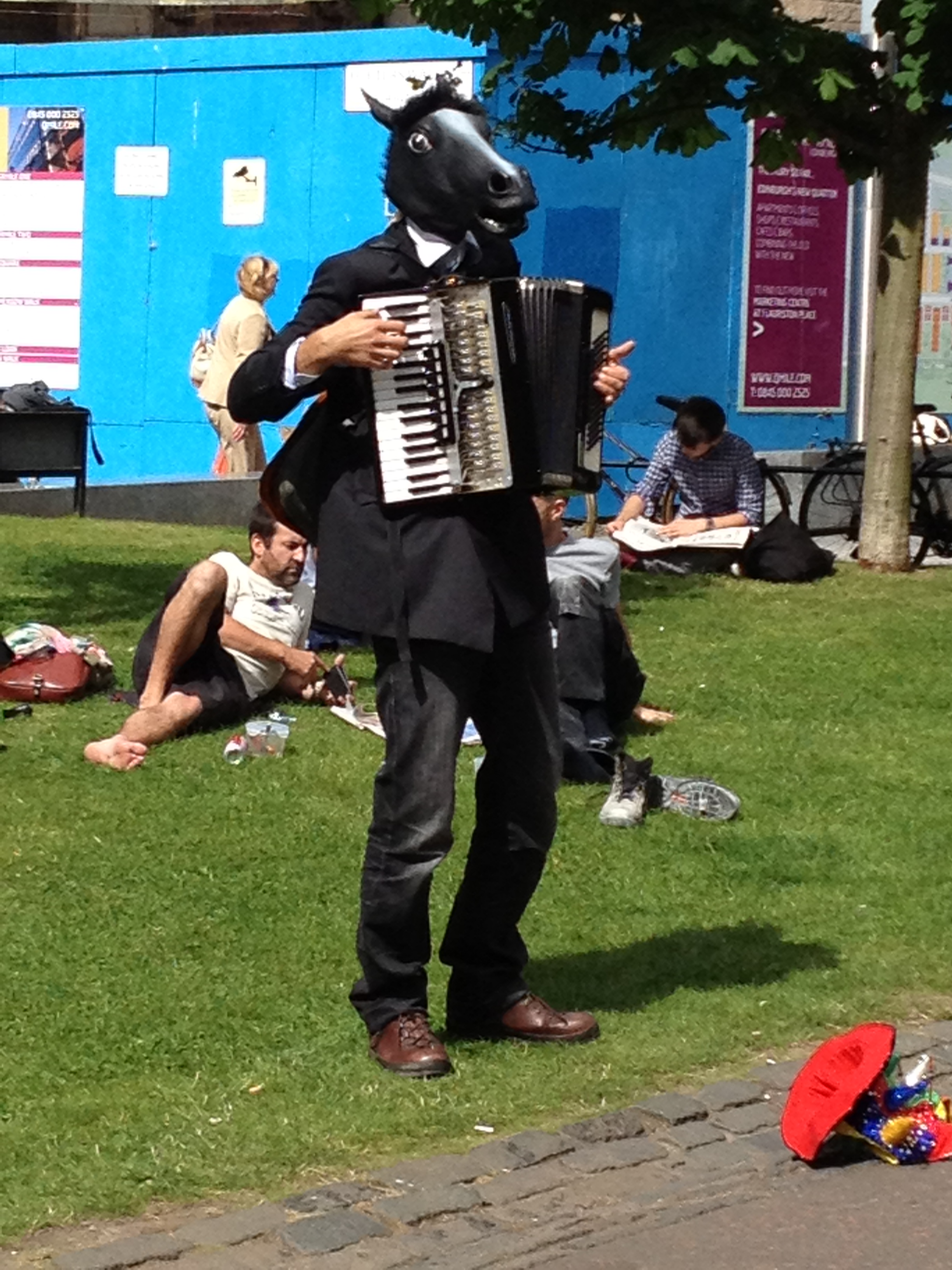 Horse playing the accordion - and why not?